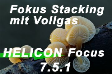 Fokus Stacking mit Vollgas